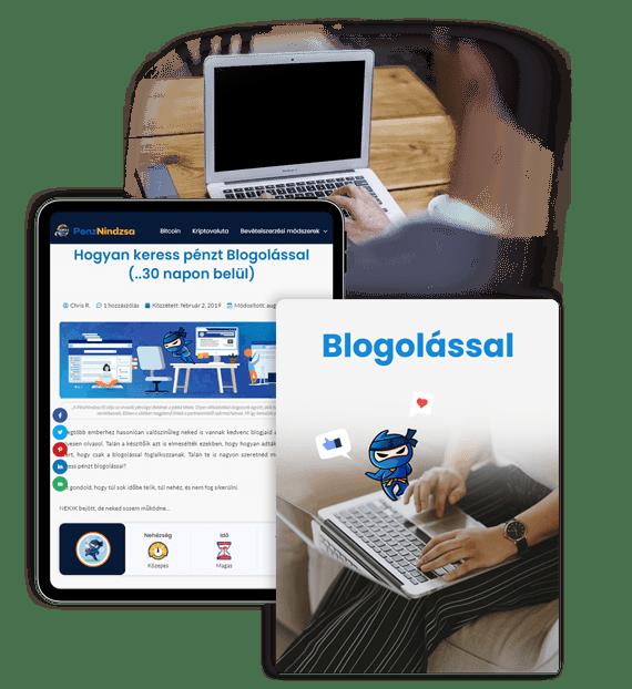 hogyan lehet online pénzt keresni egy webprogramozó számára