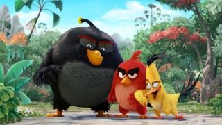 Az Angry Birds pénzt keres az interneten)