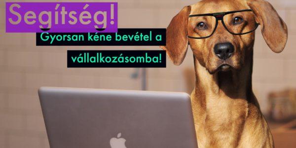 Melyik programnyelv mennyit ér? - Programozói fizetések Magyarországon - csepeligsm.hu